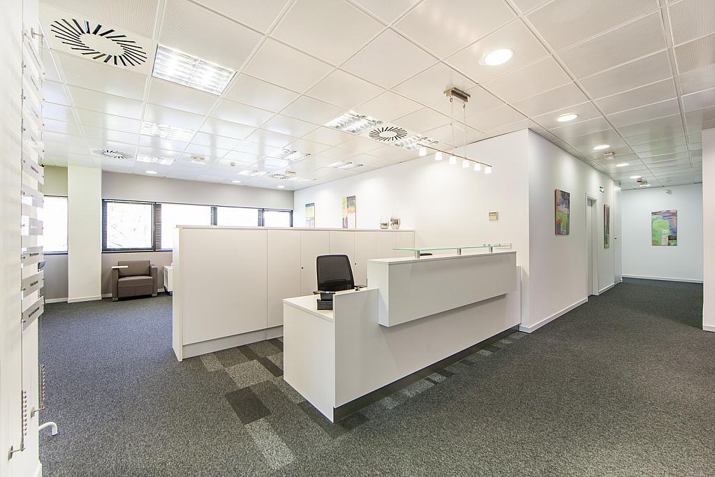 Oficina en alquiler en calle Gabriel García Marquez, El Cantizal en Rozas de Madrid (Las) - 170876577