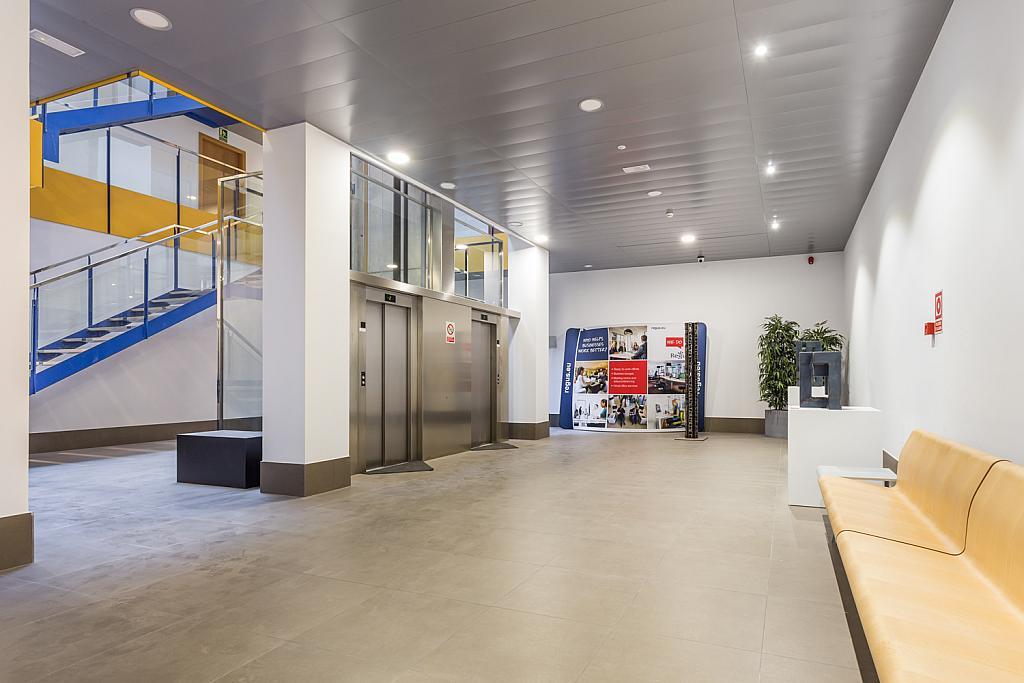 Oficina en alquiler en calle Gremi de Sabaters, Sa Indioteria en Palma de Mallorca - 239804319