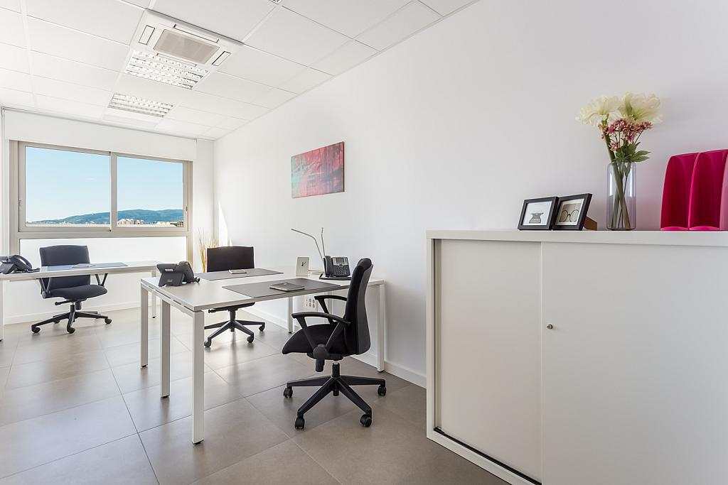 Oficina en alquiler en calle Gremi de Sabaters, Sa Indioteria en Palma de Mallorca - 239826418