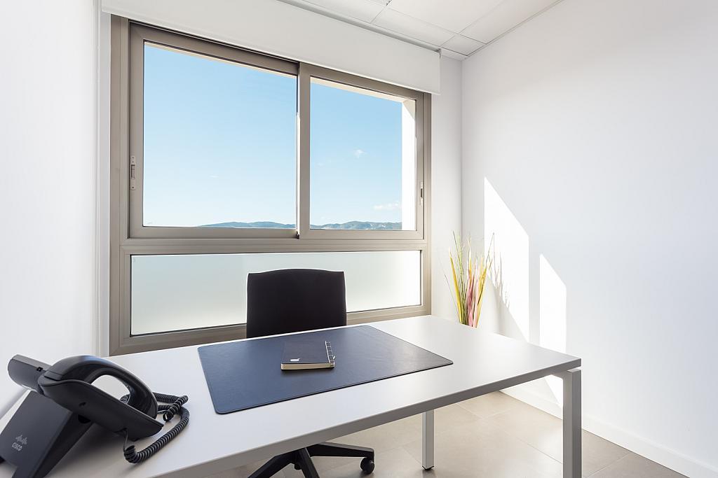 Oficina en alquiler en calle Gremi de Sabaters, Sa Indioteria en Palma de Mallorca - 239826421