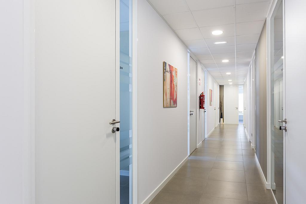 Oficina en alquiler en paseo Mallorca, Cort, Jaume III en Palma de Mallorca - 239826659