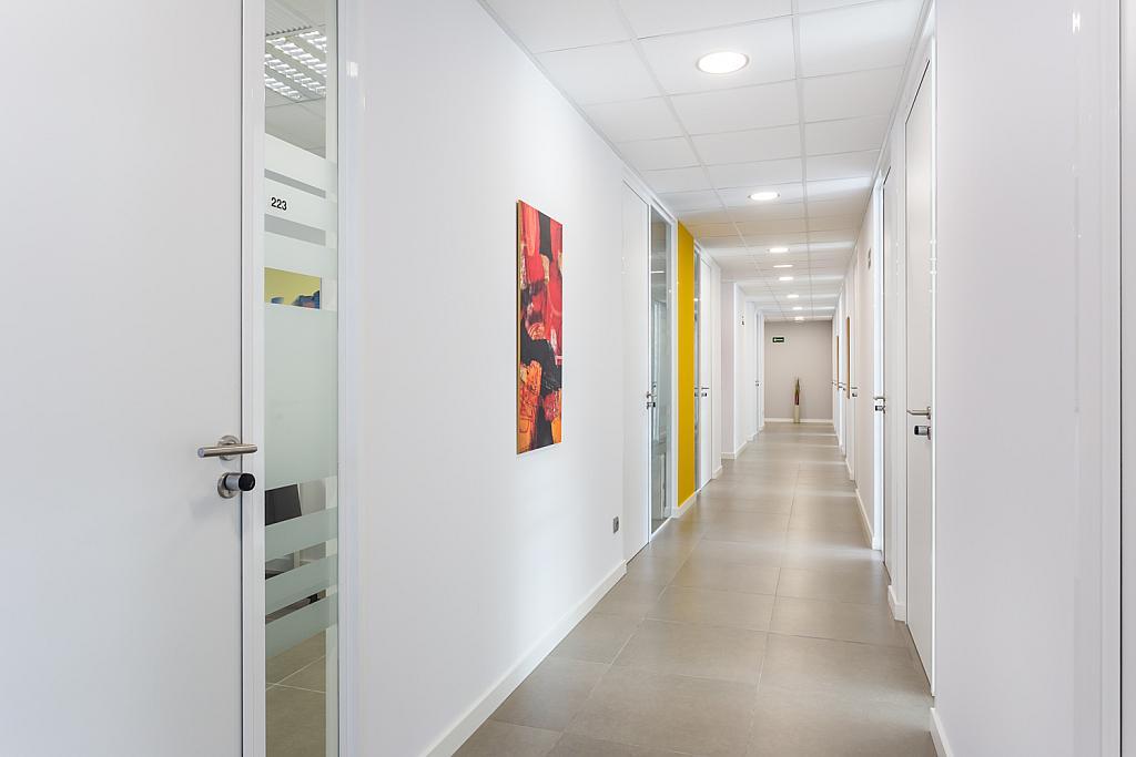 Oficina en alquiler en paseo Mallorca, Cort, Jaume III en Palma de Mallorca - 239826663