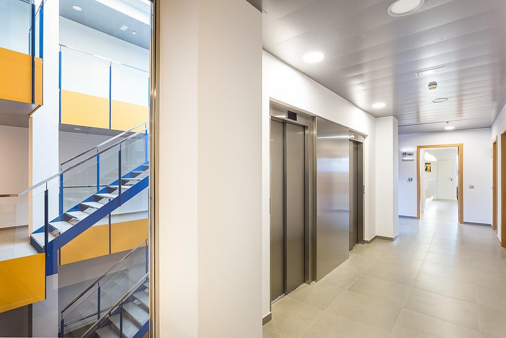 Oficina en alquiler en paseo Mallorca, Cort, Jaume III en Palma de Mallorca - 239826713