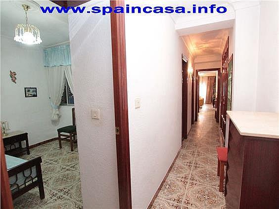 Piso en alquiler en paseo Independencia, Huelva - 253591985