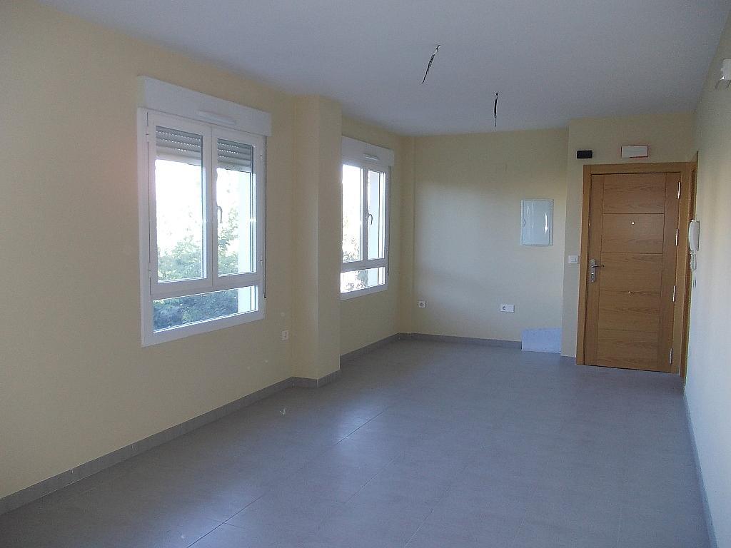 Oficina en alquiler en calle Bulevar, El Bulevar en Jaén - 316733155