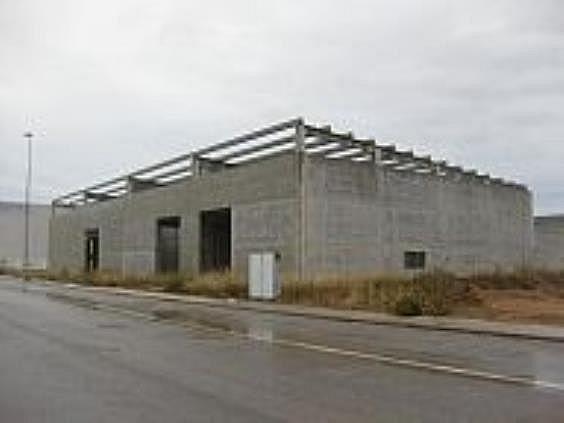 Nave industrial en alquiler en Bisbal del Penedès, la - 272662903