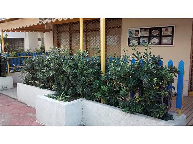 Local comercial en alquiler opción compra en Cap de sant pere en Cambrils - 309167024