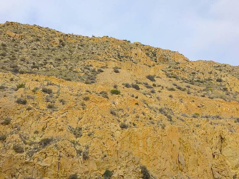 Foto - Apartamento en venta en Albufereta en Alicante/Alacant - 256630395