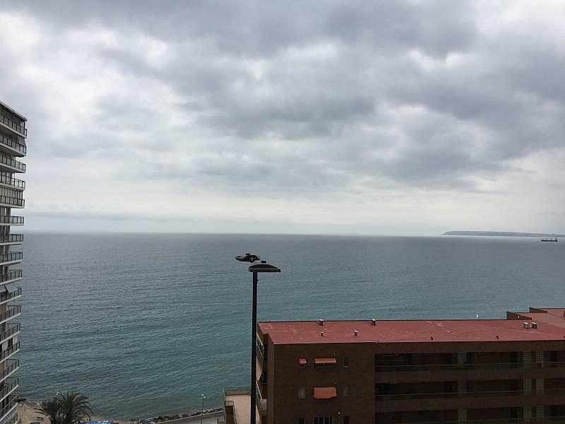 Foto - Apartamento en venta en Albufereta en Alicante/Alacant - 256841464