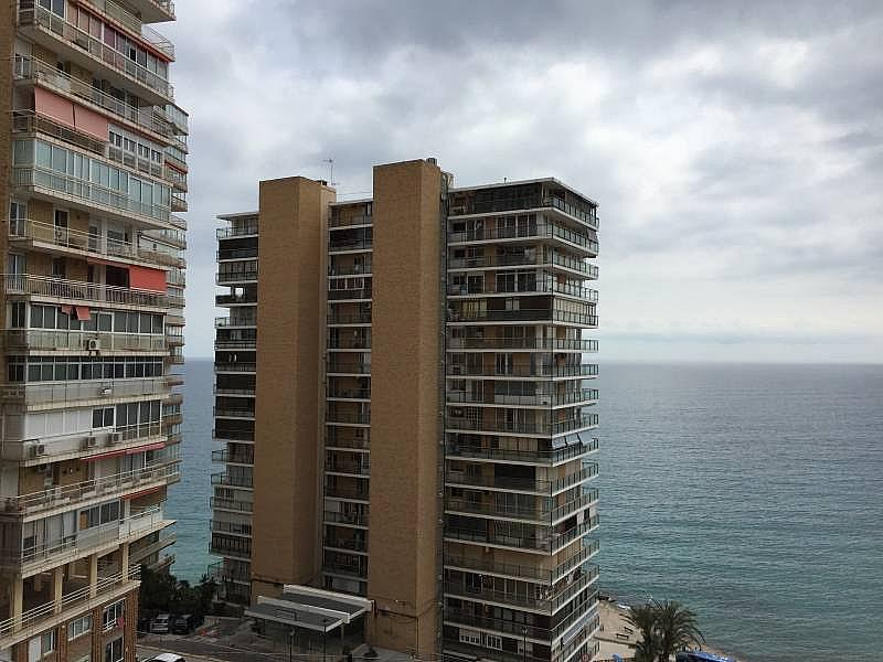 Foto - Apartamento en venta en Albufereta en Alicante/Alacant - 256841467