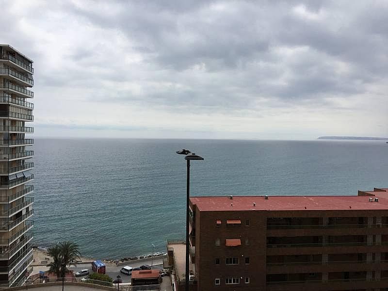 Foto - Apartamento en venta en Albufereta en Alicante/Alacant - 256841476