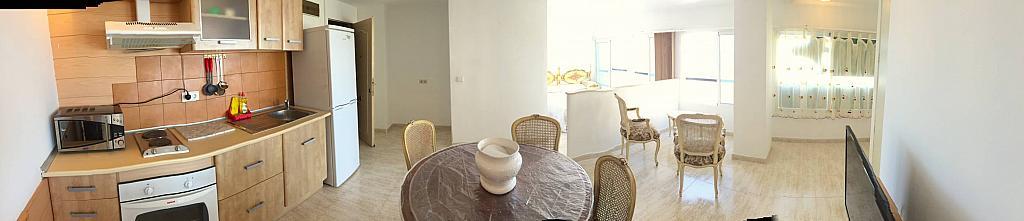 Foto - Estudio en alquiler en Albufereta en Alicante/Alacant - 276201453