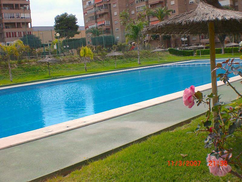 Foto - Apartamento en venta en Playa de San Juan en Alicante/Alacant - 324278217