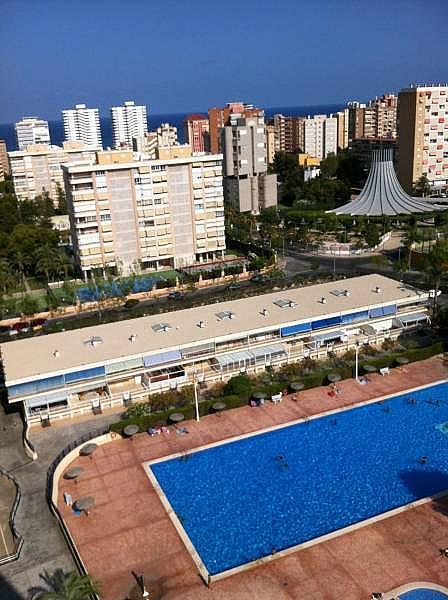 Foto - Apartamento en venta en Playa de San Juan en Alicante/Alacant - 283139213
