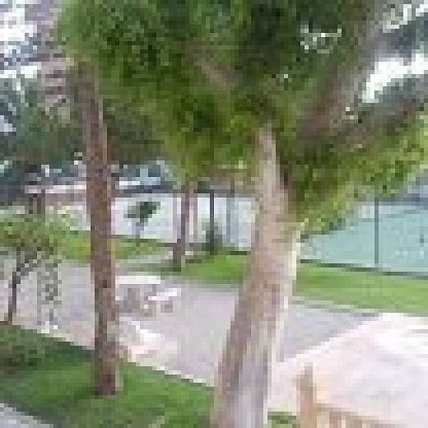 Foto - Apartamento en venta en Playa de San Juan en Alicante/Alacant - 204584545