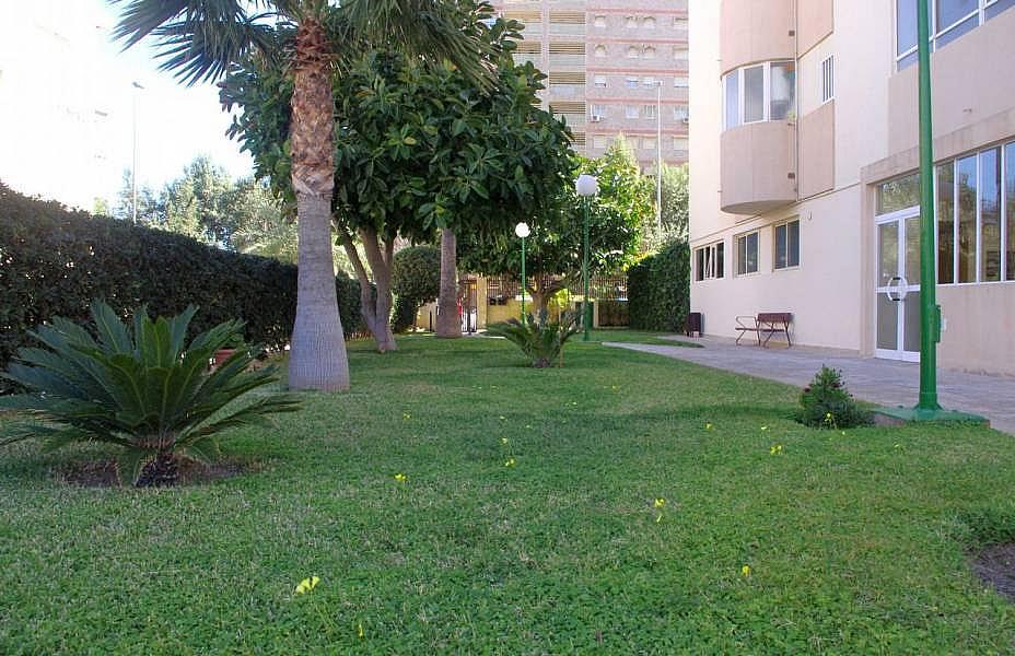 Foto - Apartamento en venta en Playa de San Juan en Alicante/Alacant - 330360961