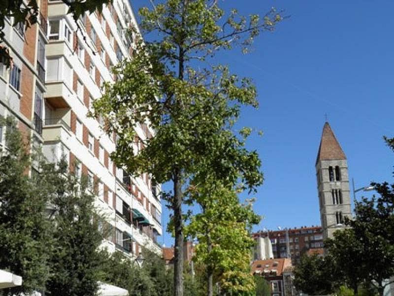 Foto - Piso en alquiler en calle Portugalete, Centro en Valladolid - 331549496