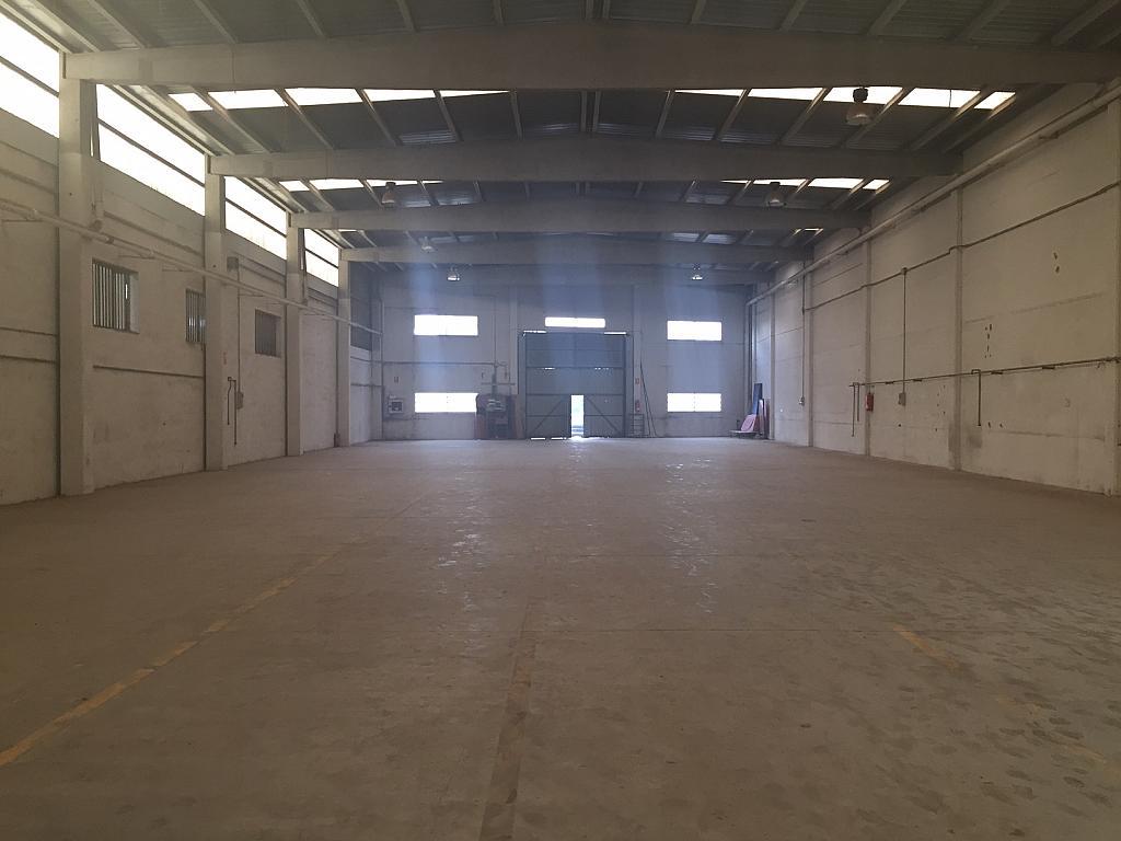 Nave industrial en alquiler en polígono Els Mollons, El Carmen en Alaquàs - 280252745