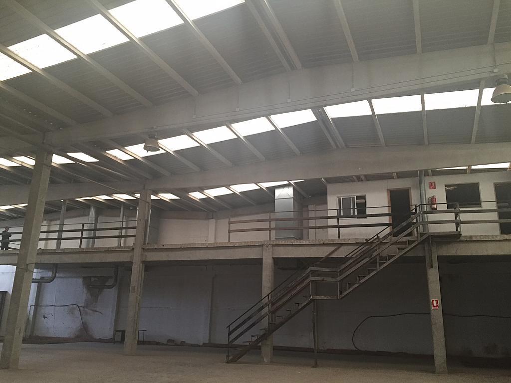 Nave industrial en alquiler en polígono Els Mollons, El Carmen en Alaquàs - 280252747