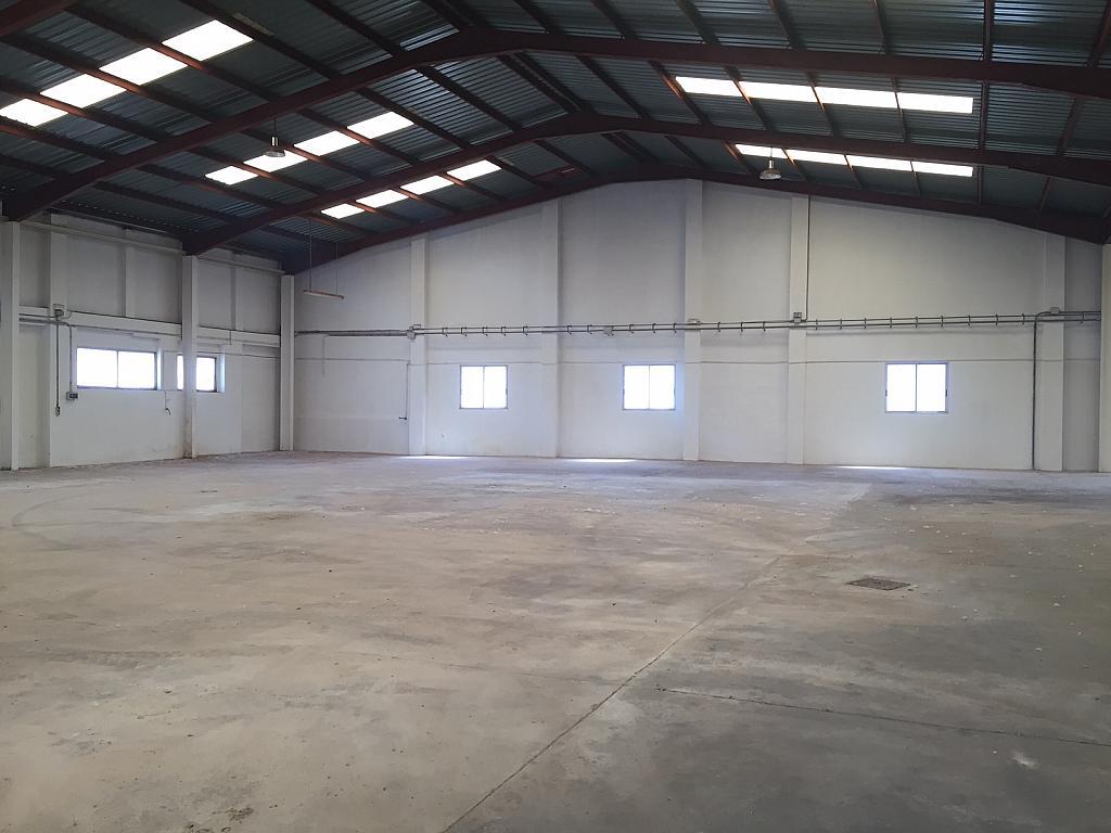 Nave industrial en alquiler en polígono Aeropuerto, Centro ciudad en Manises - 292362146