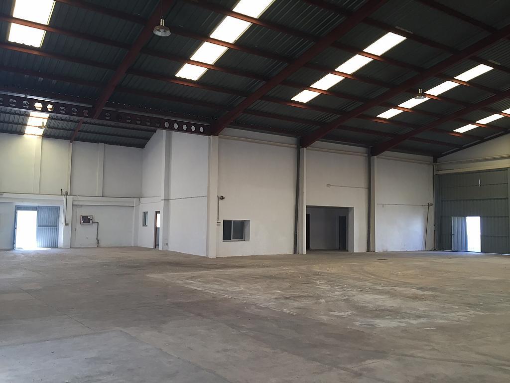 Nave industrial en alquiler en polígono Aeropuerto, Centro ciudad en Manises - 292362147