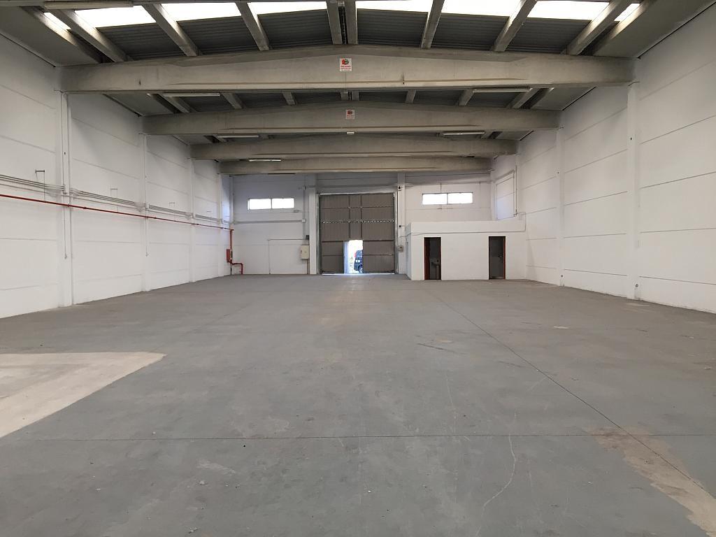 Nave industrial en alquiler en calle Acequia Favara, Paiporta - 227888789