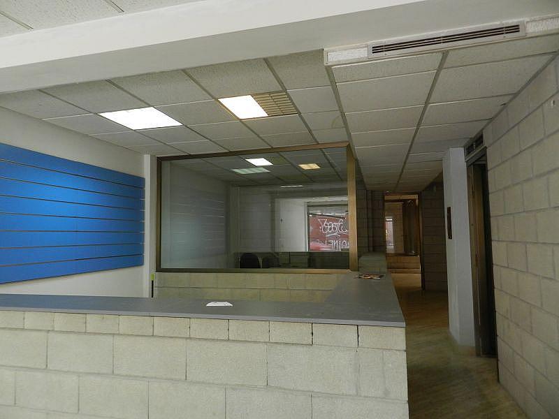 Foto - Local comercial en alquiler en calle Asilo Pisos Azules, Centro (Paseo Germanías - Asilo - Pla) en Elche/Elx - 335931948