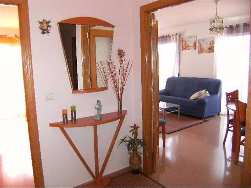 Foto - Piso en alquiler en calle Altabix, Altabix en Elche/Elx - 335932170