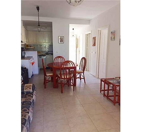 Apartamento en alquiler de temporada en Las Marinas - Les Marines  en Dénia - 304270199
