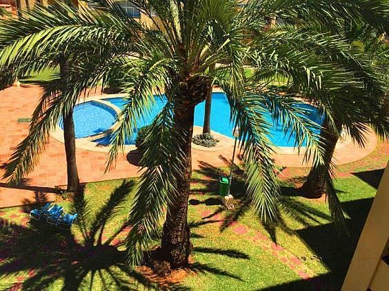 Apartamento en alquiler de temporada en Las Marinas - Les Marines  en Dénia - 304270235