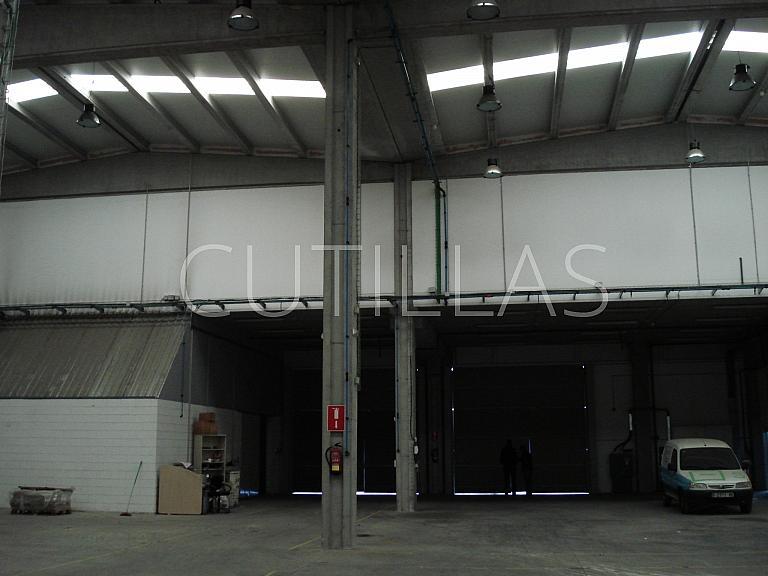 Imagen 7 - Nave industrial en alquiler en Sant Andreu de la Barca - 261854527