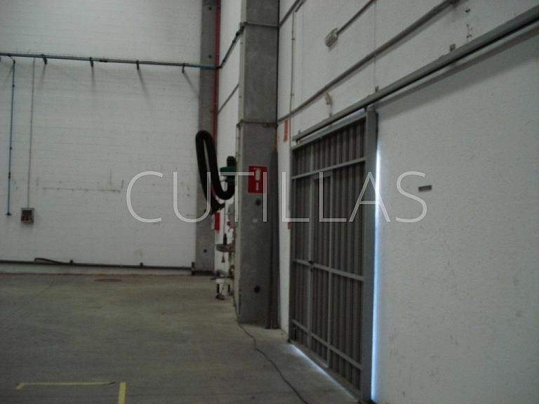 Imagen 6 - Nave industrial en alquiler en Sant Andreu de la Barca - 261854560