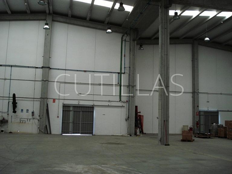 Imagen 16 - Nave industrial en alquiler en Sant Andreu de la Barca - 261854614
