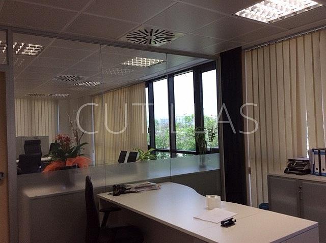 Imagen 10 - Nave industrial en alquiler en Hospitalet de Llobregat, L´ - 268735749