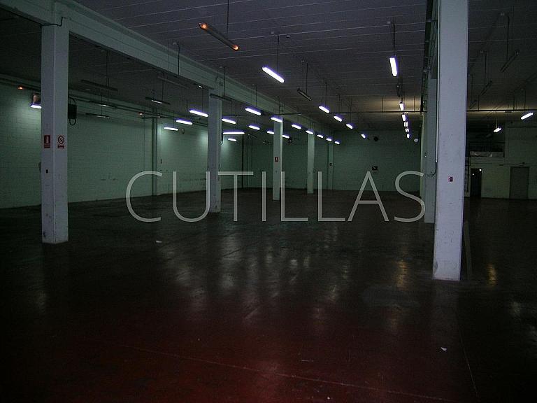 Imagen 4 - Nave industrial en alquiler en Sant Boi de Llobregat - 280393796