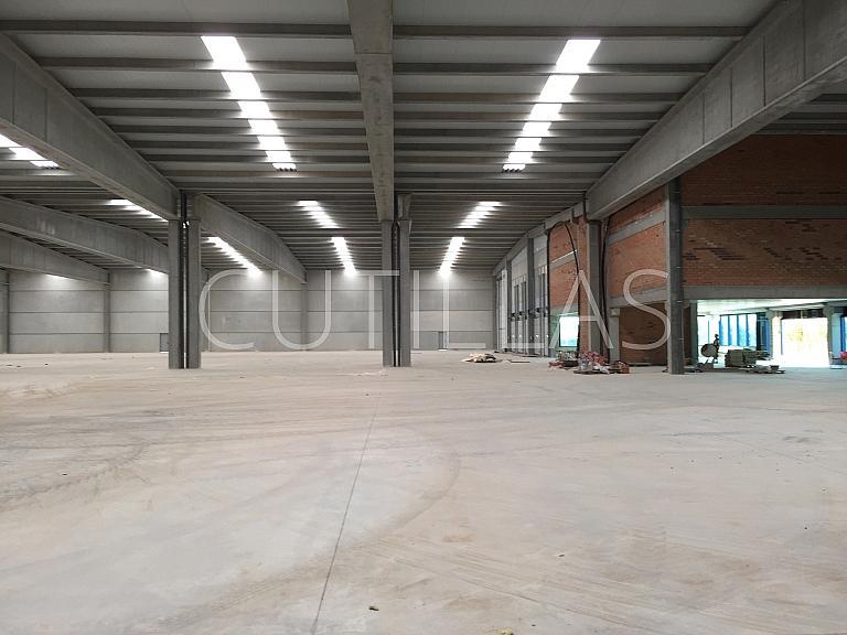 Imagen 13 - Nave industrial en alquiler en Prat de Llobregat, El - 320417726
