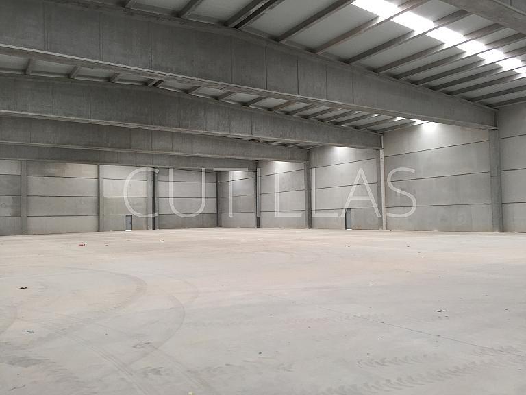 Imagen 15 - Nave industrial en alquiler en Prat de Llobregat, El - 320417732