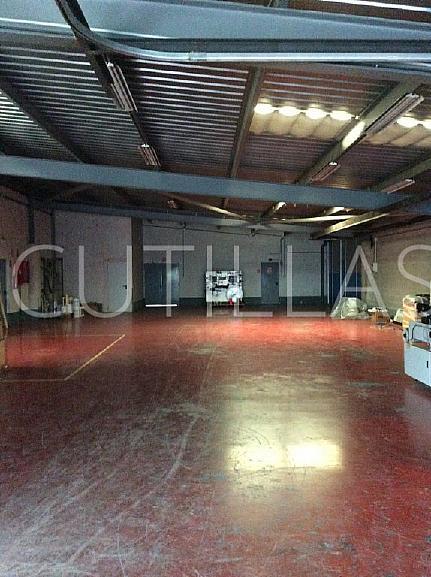 Imagen 6 - Nave industrial en alquiler en Sant Feliu de Llobregat - 160363447
