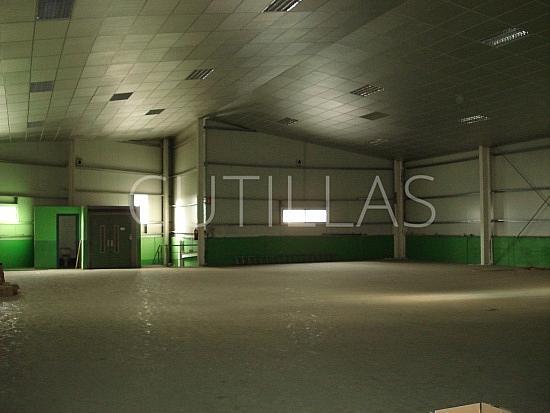 Imagen 2 - Nave industrial en alquiler en Cornellà de Llobregat - 160363549