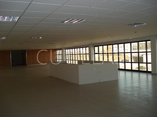 Imagen 5 - Nave industrial en alquiler en Sant Boi de Llobregat - 160363657