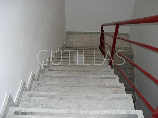 Imagen 7 - Nave industrial en alquiler en Sant Boi de Llobregat - 160363663