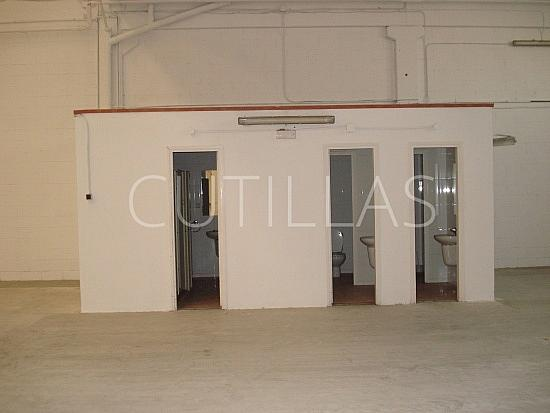 Imagen 4 - Nave industrial en alquiler en Sant Boi de Llobregat - 203086057