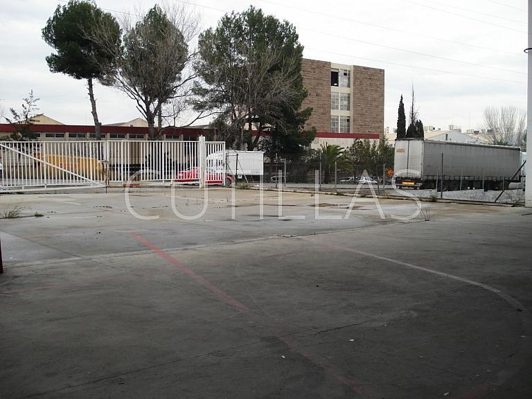Imagen 3 - Nave industrial en alquiler en Sant Andreu de la Barca - 160364200