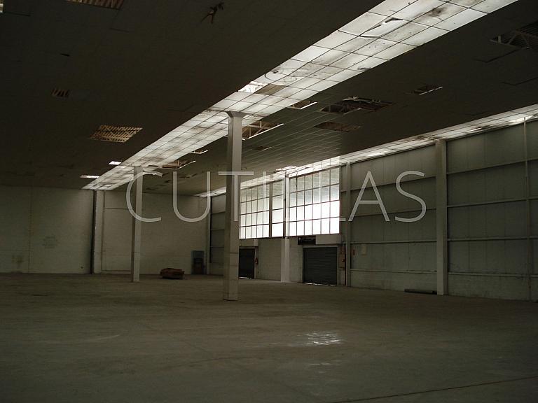 Imagen 4 - Nave industrial en alquiler en Sant Andreu de la Barca - 160364203