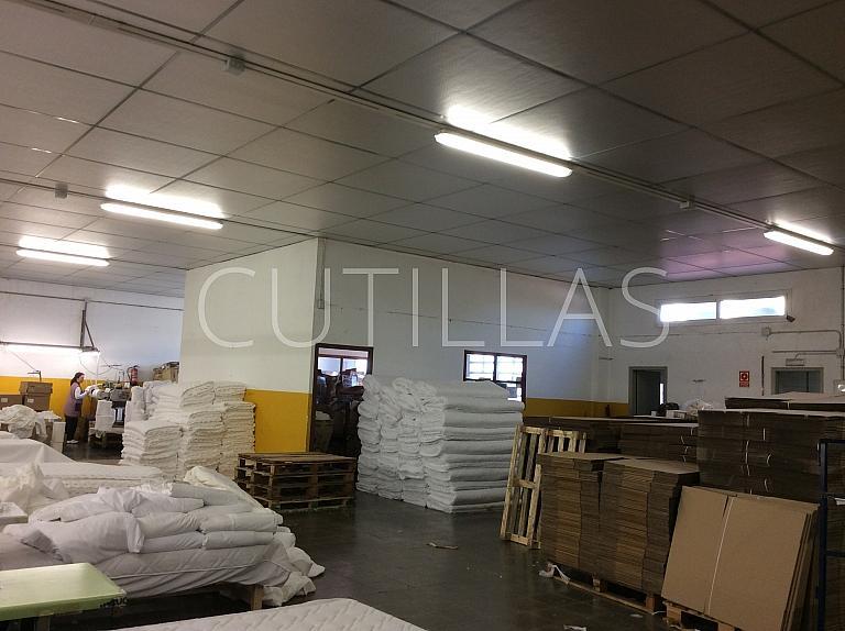 Imagen 10 - Nave industrial en alquiler en Sant Julià de Cerdanyola - 239009330