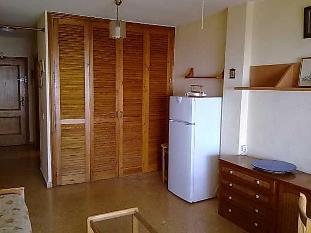 Estudio en alquiler en calle Pinós, Playa Mucha Vista en Campello (el) - 329613666