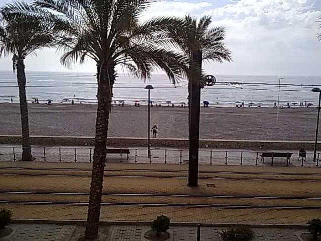 Estudio en alquiler en calle Pinós, Playa Mucha Vista en Campello (el) - 329613672