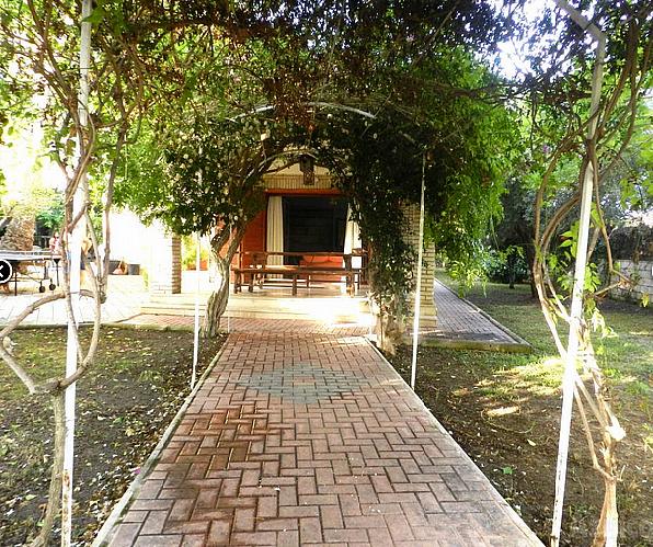 Chalet en alquiler en calle Camino Muchavista, Playa de San Juan - 181327365