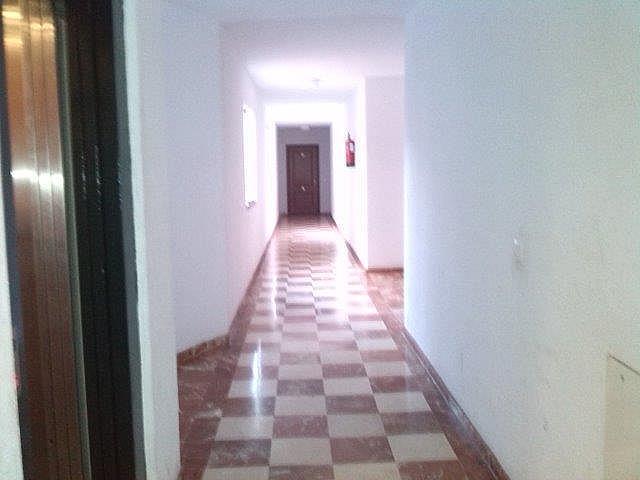 Piso en alquiler en calle Avenida Andalucia, Morche, El - 161559860