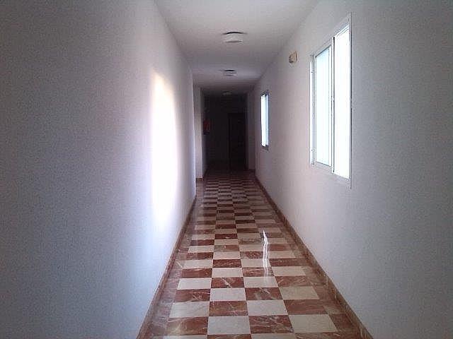 Piso en alquiler en calle Avenida Andalucia, Morche, El - 161559863